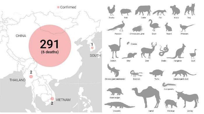 Gambaran Visual tentang Virus Corona yang Tengah Mewabah di China dan Negara-negara Asia Lain