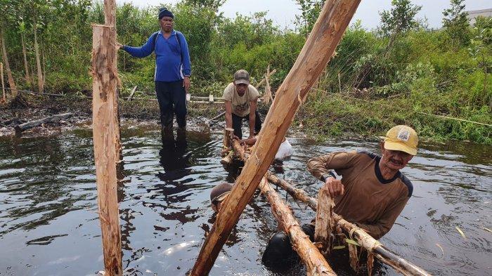Cegah Kebakaran Lahan Gambut, BRGM Bangun Sekat Kanal di Banyuasin