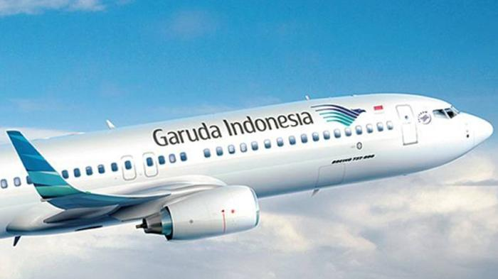 Kadal Jinak Terlepas di Pesawat Garuda Indonesia Rute Merauke-Jakarta