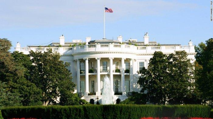 Anjing yang DiadopsiJoe Biden, Major dan Champ akan Jadi Penghuni Gedung Putih