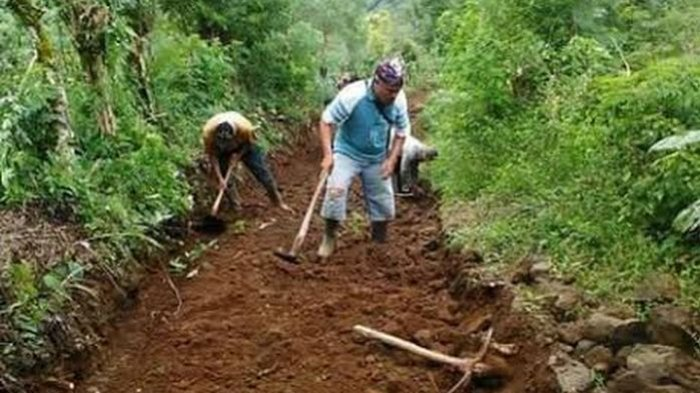 Hebat! Warga OKU Selatan Bangun Sendiri Jalan Penghubung Desa Sepanjang 5 Kilometer