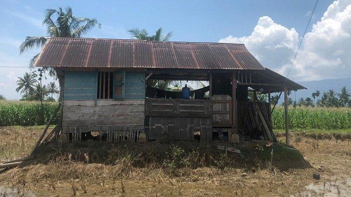 Cara Unik Jalani Isolasi Mandiri di Kampung Halaman: Buat Gubuk di Hutan Hingga Kemah di Tepi Sungai