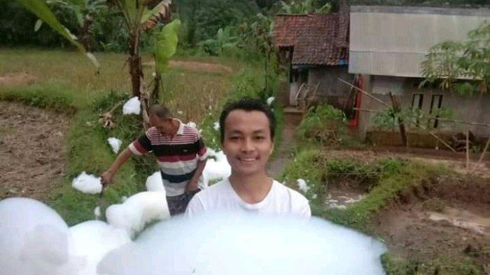 Geger Kemunculan Gumpalan Busa di Sawah, Usai Hujan Disertai Petir di Desa Girijaya Sukabumi