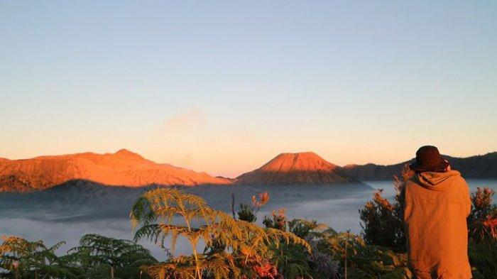 5 Destinasi Wisata di Sekitar Gunung Bromo yang Bisa Dikunjungi Saat Hari Raya Nyepi