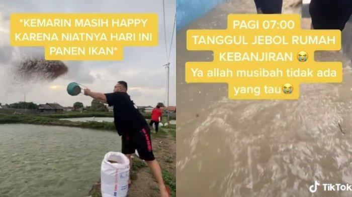 Kisah Pilu Nisa, Gagal Panen 2 Ton Ikan Gurami karena Banjir, Bibit yang Baru Ditabur juga Hanyut
