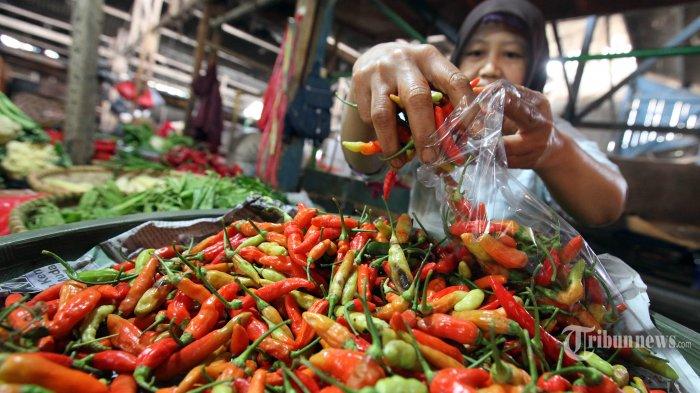 Melonjak Drastis Harga Cabe Rawit Hijau Di Pasar Koja Tembus Rp 80 000 Per Kilo Tribunnews Com Mobile
