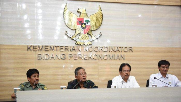 Harga CPO Ambles, Menteri Darmin Putuskan Hapus Pungutan Hasil Ekspor