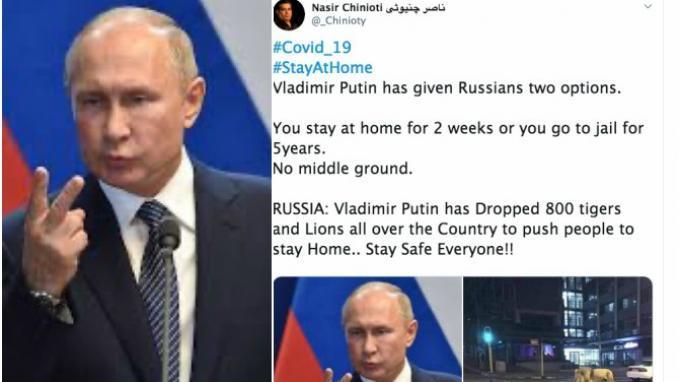 HOAKS: Viral di Media Sosial Vladimir Putin Lepas 800 Singa untuk Cegah Orang Keluar Rumah