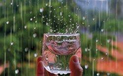 4 Minuman Sehat yang Cocok Diminum saat Musim Hujan