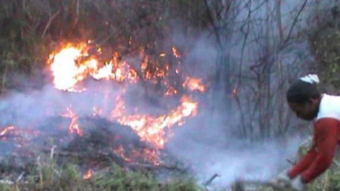 Hutan di Lereng Gunung Lawu Wilayah Karanganyar Terbakar, Api Diduga dari Puntung Rokok