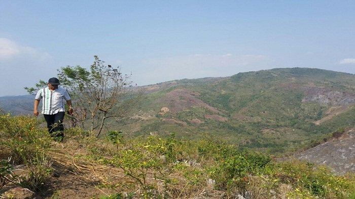 96 Ribu Hektare Hutan Gundul di Lombok NTB seperti Lapangan Bola