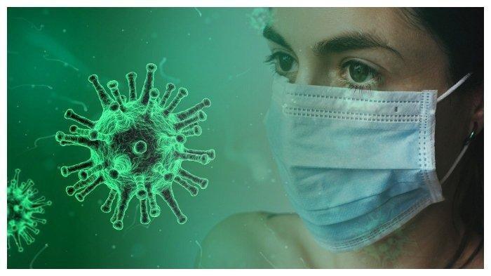 Ilustrasi virus corona. Studi dari Harvard Medical School menyatakan virus corona jenis baru (SARS-CoV-2) kemungkinan sudah ada dan menyebar di China sejak Agustus 2019.