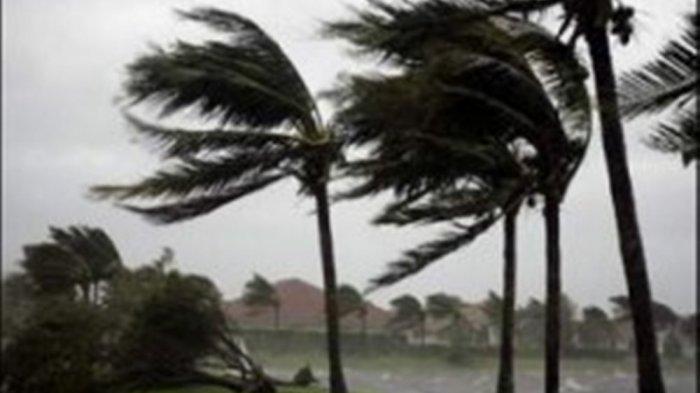BNPB: 152 Jiwa Terdampak Fenomena Alam Angin Kencang di Kota Cimahi Jawa Barat