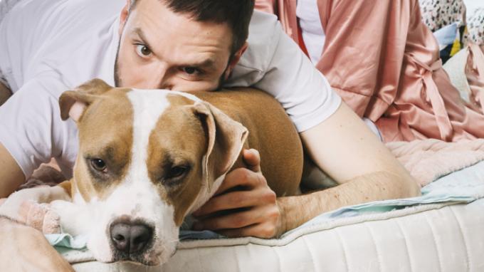 Ilustrasi seorang pria dan seekor anjing.
