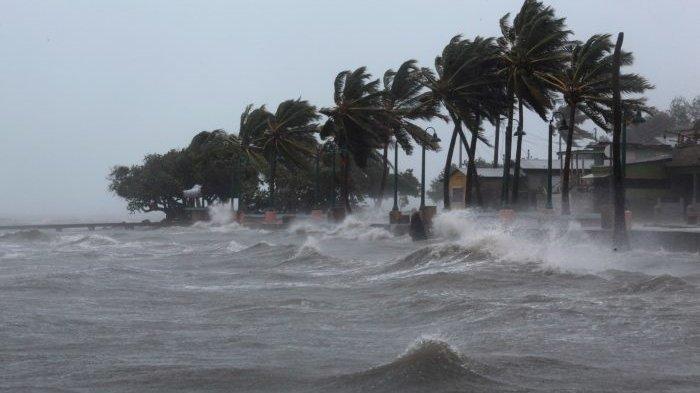 Ancaman Tsunami di Pandeglang dan Pohon Kelapa