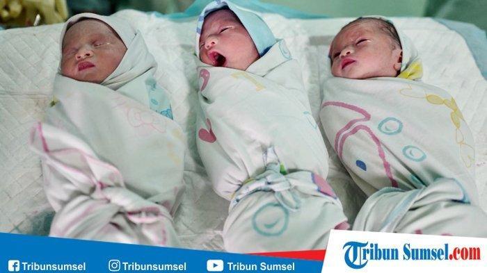 Ilustrasi: bayi kembar tiga.
