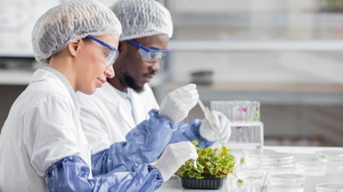 Apa Itu Bioteknologi? Berikut Pengertian, Jenis dan Contohnya