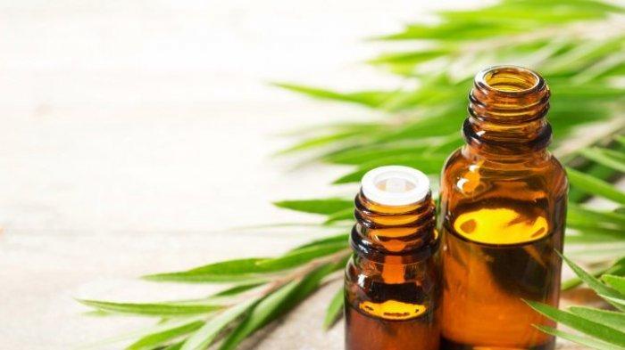 ILustrasi essential oil