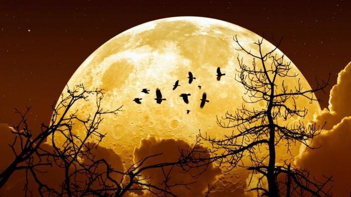 Bulan Februari, Langit Indonesia Akan Dihiasi Supermoon dan Penampakan Planet Merkurius