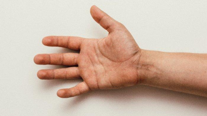 Tes Kepribadian - Jari Telunjuk atau Jari Manismu, Mana yang Lebih Panjang? Bisa Ungkap Sifat Aslimu