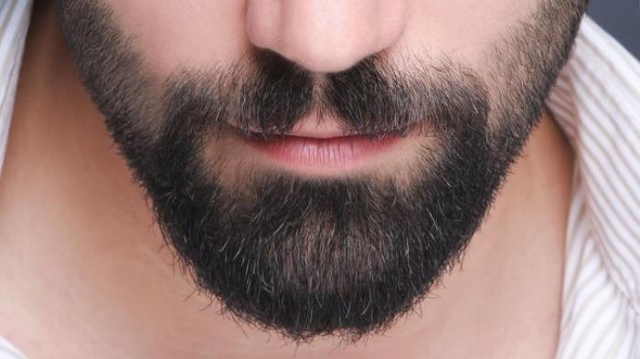 Manfaat Minyak Zaitun untuk Pria: Menjaga Kesehatan Kulit Kepala hingga Memelihara Jenggot