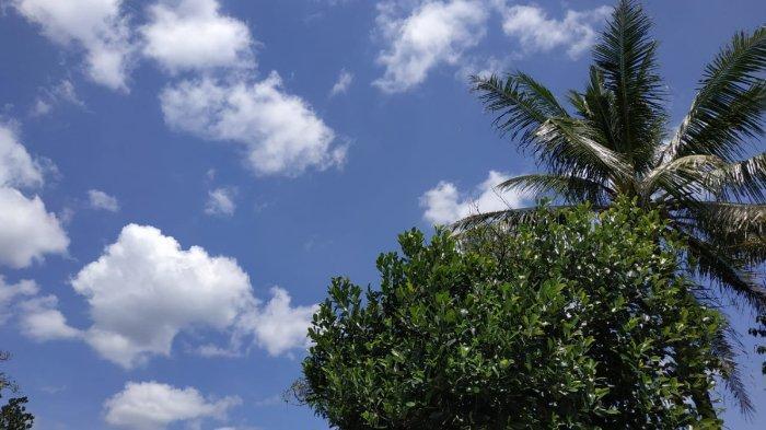 Dampak PSBB, Dinas LH DKI Klaim Langit Ibu Kota Kian Cerah dan Kualitas Udara Membaik