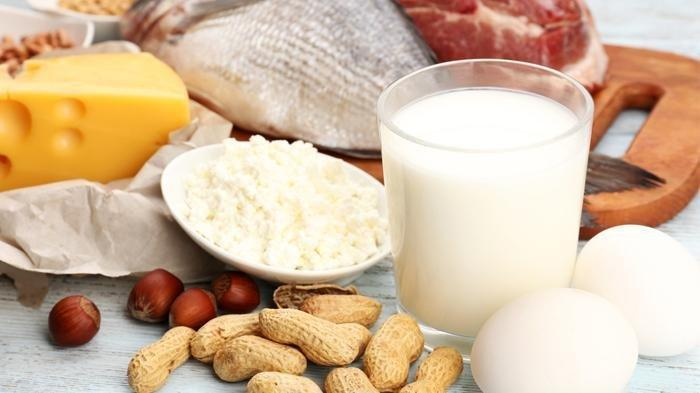 Ilustrasi makanan kaya protein.