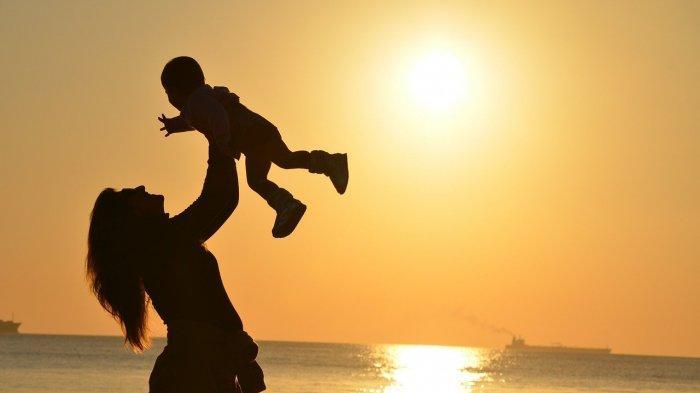 Berikut Manfaat Energi Matahari bagi Makhluk Hidup, Baik Manusia, Hewan, atau Tumbuhan