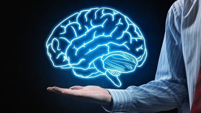 TRIBUNNEWSWIKI - Mengenal Neuroma Akustik, Tumor Jinak pada Saraf Keseimbangan