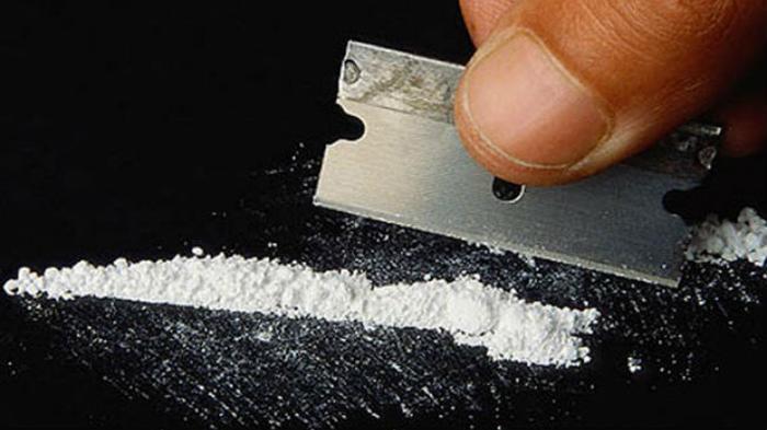 Eks Kapolsek Kebayoran Baru yang Terjerat Kasus Narkoba Pernah Ditegur Foto Bareng Vitalia Sesha