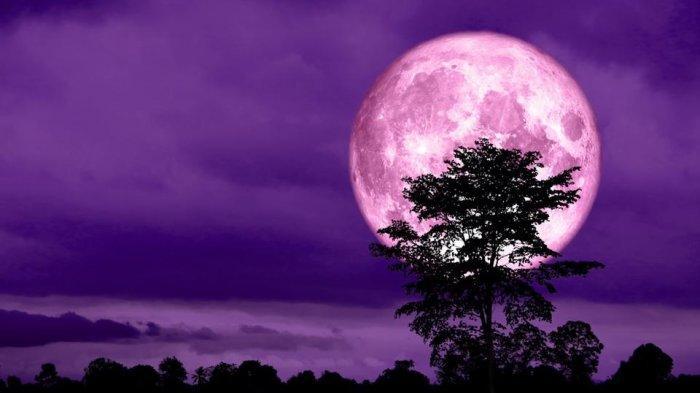 Kapan Gerhana Bulan Penumbra Terjadi? Berikut Ini Waktu Terbaik untuk Menyaksikannya