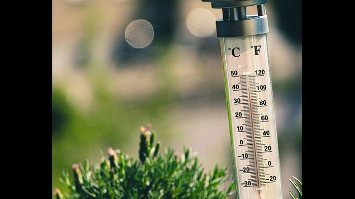 Apa Perbedaan Suhu dan Panas? Berikut Penjelasan dan Cara Perpindahan Energi Panas