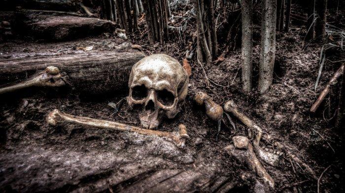 Pemuda 20 Tahun Ditemukan Tinggal Tulang Belulang, Berawal dari Bocah Cari Burung Lalu Terpeleset