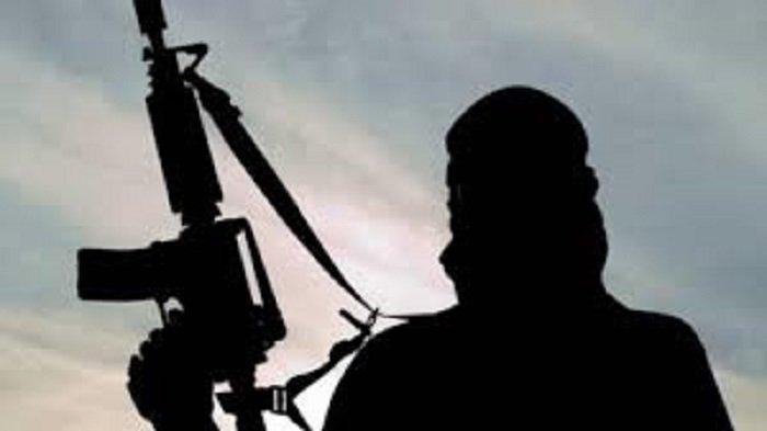 Teroris KKB Osimin Wenda Kembali Tertangkap di Puncak Jaya