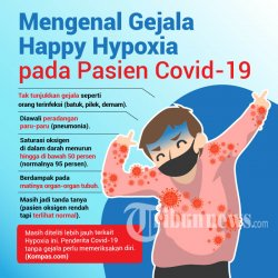 Infografis Mengenal Gejala Happy Hypoxia pada Pasien Covid-19, Kamis (20/8/2020). TRIBUNNEWS/Reza Arief Darmawan