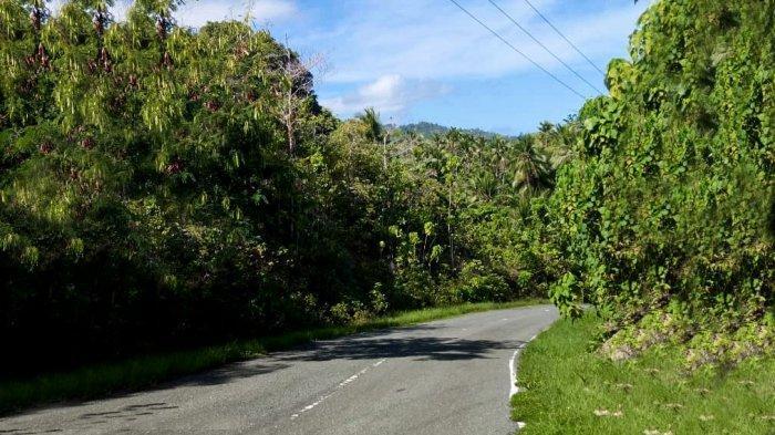 Infrastruktur jalan di Pulau Morotai, satu dari 10 Bali Baru yang dicanangkan Pemerintah, kini jadi mulus. Siap menerima kunjungan wisatawan lokal dan internasiona.