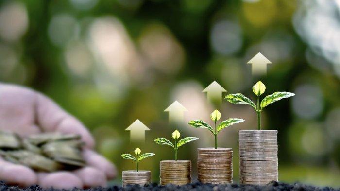 Keuntungan Investasi Mata Uang dan Rekomendasi Valas yang Nilainya Stabil