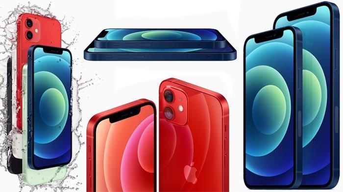 iPhone 12 reguler dan iPhone 12 Mini
