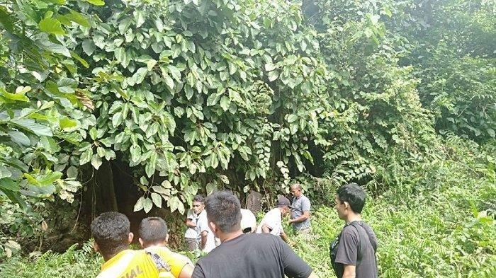 Pemuda Aceh Hilang setelah Duduk di Bawah Pohon Beringin, Warga Sebut Pikiran Sering Kosong