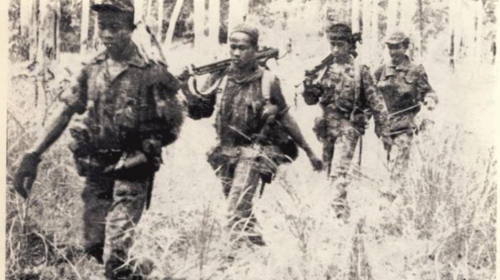 Kisah Pasukan Elite Indonesia Merebut Irian: Bergantung di Pohon Hingga Rebus Sepatu karena Lapar