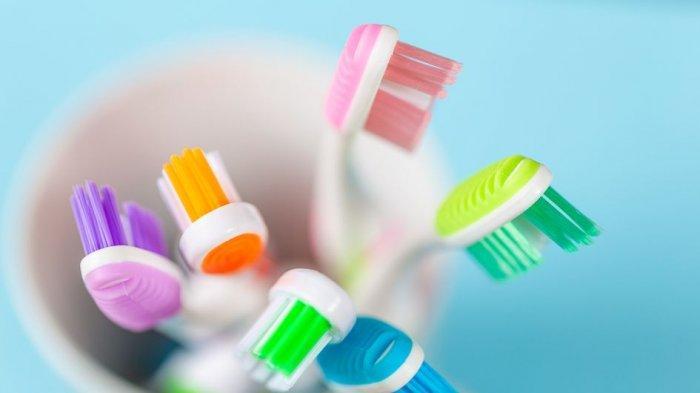 Penting, Begini Cara Rawat Sikat Gigi agar Tak Jadi Sarang Bakteri
