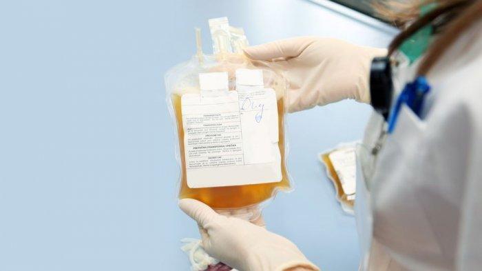 Kisah Pengalaman Para Pencari Donor, Sulitnya Mencari Plasma Konvalesen