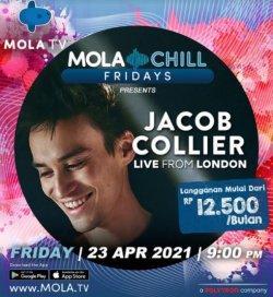 Jacob Collier 94