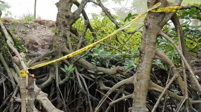 Jalan menuju gubuk di sebuah tambak di Canang, yang diduga sebagai tempat para pelaku merakit bom bunuh diri di Polrestabes Medan. TRIBUN MEDAN/M ANDIMAZ KAHFI