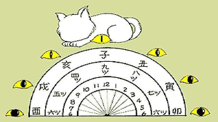 Jam Mata Kucing Jadi Patokan Ninja Jepang Melihat dan Menghitung Waktu