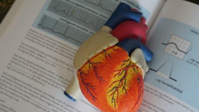 Usia Harapan Hidup Pasien Gagal Jantung Lebih Rendah Dibandingkan Sebagian Besar Pasien Kanker