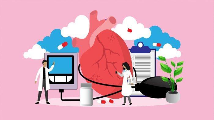 Mengenal Sistem Peredaran Darah Manusia: Penjelasan, Fungsi, hingga Gangguan