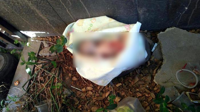 Jasad Bayi Beberapa Kali Ditemukan di Tempat Sampah Hotel Diradja Mampang, Siapa Pembuangnya?