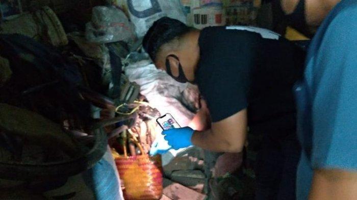 Fakta Kakek Bunuh Istri dan 40 Hari Tinggal Bersama Mayat yang Dikubur di Kolong Tempat Tidur