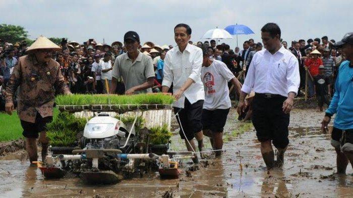 Jokowi dan Kementerian Pertanian.